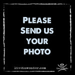 Email us your photos!